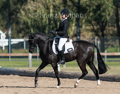150704_YR_Champs_Sat_2705.jpg (FranzVenhaus) Tags: horses sydney young australia riding newsouthwales ponies athletes aus equestrian supporters riders officials dressage spectatorsvolunteers