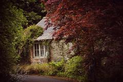 (Kim van Dijk photography) Tags: old ireland urban house history garden landscape shed
