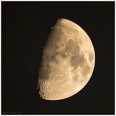 Moon 12th Dec 2016 (Malc Bawn) Tags: moon astro halfmoon night winter craters