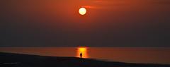 nel sole (pamo67) Tags: pamo67 inthesun tramonto sunset mare sea man uomo sole sun silhouette estate summer riva shore spiaggia beach panoramica wiew cielo sky acqua water riflesso reflections pasqualemozzillo