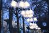 s161229_1011+_EisBlumen_ZwischeDeJoahrn (gareth.tynan) Tags: eisblumen zwischedejoahrnfest weihnachtsbeleuchtung