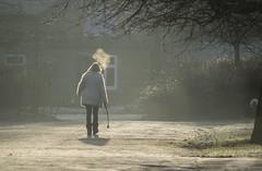 In the Park (Pam 73) Tags: park morley leeds winter frost sunlight breath pathtrees walk woman lady dogwalker hazy frosty