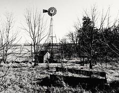amid the ruins...(HMM) (BillsExplorations) Tags: windmill windmillwednesday waterpump ruins ruraldecay rural abandoned decay forgotten old vintage country hww illinois abandonedillinois abandonedfarm farm monochromemonday hmm
