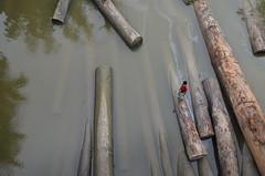 I am here! (ashik mahmud 1847) Tags: bangladesh d5100 nikkor aerial water wood people boy line pattern texture