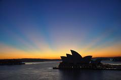 Sydney (missgeok) Tags: sydneyoperahouse sydney outdoor sunrise silhouettes sunrays australia beautiful ilovesydney icon sea sydneyharbour sunshine bluesky spectacular colours composition seesydney