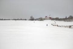 Mückenschuss (all martn) Tags: schnee snow winter langlauf langlaufen cross country skiing ski hohe tour erzgebirge osterzgebirge krusne hory ore mountains