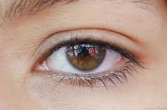 Self portrait / Auto retrato (Luis DLF) Tags: self auto retrato portrait colour london londres bus myself eyelashes pupila pupil