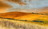 _When the field is hot_ (* landscape photographer *) Tags: primavera europe estate valle natura campo paesaggio caldo lucania 2015 dorato otaly raccolto nikond90 salvyitaly