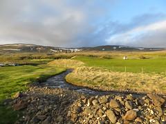 Icelandic landscape (misiekmintus) Tags: trip travel camping field creek river island iceland islandia stream europe hvammstangi northiceland hvammstangicampground