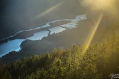 Nature at its Best. (Abriti Bakshi) Tags: trees sun mountain lake canada nature beautiful vancouver landscape day top peak gondola