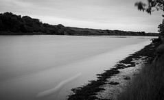 The River Coquet . (wayman2011) Tags: trees canon northumberland rivers warkworth lightroom longexposures rivercoquet bwlandscapes canon50d bw110 wayman2011