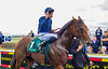 """Curragh 9.8.2015 061 • <a style=""""font-size:0.8em;"""" href=""""https://www.flickr.com/photos/75346790@N07/19831696333/"""" target=""""_blank"""">View on Flickr</a>"""