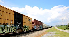 Train in Buford (Bella Lisa) Tags: train graffiti tracks freight railroads freighttrain graffititrain