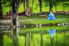 XV años (Kios Photography) Tags: naturaleza nature oaxaca sierrajuarez fotografo ecoturismo sierranorte ixtlan ixtlandejuarez ecoturixtlan kiosgarcia kiosphotography