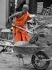 monk with wheelbarrow and shovel (hansecoloursmay) Tags: laos luangprabang monk photoshop wheelbarrow shovel work dirt orange
