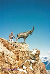 Above San Moritz - Pete with Ibex (Sussexshark) Tags: september 1990 holiday san moritz pete ibex
