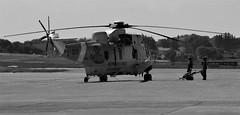 Rescue Helicopter (EvenHarbo) Tags: nikond7100 nikon norge norway helicopter rescuehelicopter aircraft redningstjeneste luftforsvaret westland 330skvadron seaking westlandseaking pilot sola solalufthavn airport airshow blackandwhite