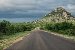 Kopje in central Kruger Park. (mathurin.lgff) Tags: kopje kruger landscape road limpopo southafrica africa