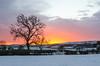 Morning Glow (andythomas390) Tags: sunrise dawn glow tree snow nikon d7000 18200mm
