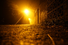 Crawl Home (JamieHaugh) Tags: clevedon northsomerset england sony a6000 night path outdoor outdoors lane lampost streetlight orange