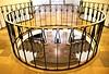 piece of gold (Fotoristin - blick.kontakt) Tags: düsseldorf treppe stairs staircase architecture demolished round golden lines pieceofgold hausdergiesereiindustrie treppengeländer empore abriss demolition