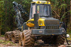 boys' toys (1) (grahamrobb888) Tags: nikon nikond800 nikkor50mmf18 birnamwood perthshire scotland dullweather trees industry forest mud