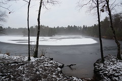 Tauwetter - thaw (okrakaro) Tags: tauwetter thaw schneeschmelze see lake nebel mist fog trees winter nature landscape bäume winterlandschaft natur januar 2017 germany