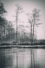 bench2 (dziurek) Tags: d750 nikon dziurek dziurman pdziurman fx lake tree shore no nobody remote silence sunrise pier bench atmosphere bare pond freedom evening morning boardwalk moody escapism outdoors scenic footbridge dawn wooden water tranquility nature jetty landscape raw vintage blackandwhite black white monochrome old bad condition obsolete archaic forest countryside country poland environment autumn winter wood park 70200