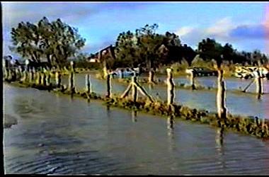 sturmflut 89NDVD_133