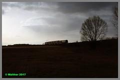 Polen_93_088aa (r_walther) Tags: dampf diesel pkp polen93 polskiekolejepaństwowe su45035 wolsztynpolenundumgebung wolsztyn wielkopolskie polen pol