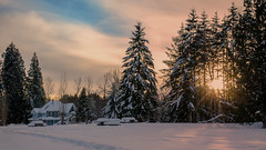 Winter in Tynehead (Sworldguy) Tags: tyneheadregionalpark house victorian architecture clouds sunrays trees winter snow field picnictables shadows surrey landscape sunset outdoors nikon d7000 dslr orange warmth pathway trail footprints forest tree allfreepicturesfebruary2018challenge