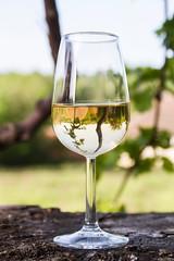 (symonap) Tags: drink glass wine toast chardonnay wood wodden beverage alcohol liquid white vine grape outdoors