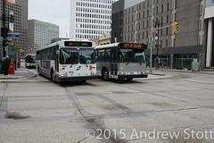 Drag Race? (awstott) Tags: new bus flyer transit orion winnipegtransit newflyer d40 orionv beaverbuslines