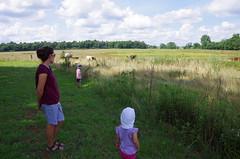 Time at Koinonia Farm
