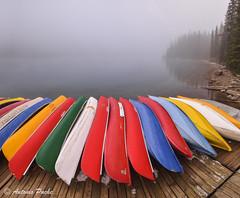 Color en la niebla. (Antonio Puche) Tags: lake canada color fog landscape lago nikon paisaje banff niebla canoas morainelake nikon173528 nikond800 lagomoraine antoniopuche
