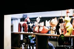 Bukseong_20150328 at 19-49-24_Edit.jpg (Kim Jaehoon) Tags: stilllife animal night cat outdoors photography chinatown nopeople korea souvenir southkorea showwindow incheon selectivefocus chineseculture colorimage animalrepresentation artistsontumblr photographersontumblr originalphotographers
