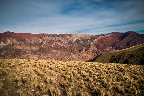 ARGENTINE - Panorama