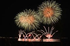 "das Feuerwerk • <a style=""font-size:0.8em;"" href=""http://www.flickr.com/photos/42554185@N00/19041613682/"" target=""_blank"">View on Flickr</a>"