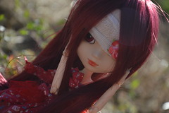 Red Queen (Hoshiko-Pullip) Tags: red dolls wine wig pullip custom obitsu stica