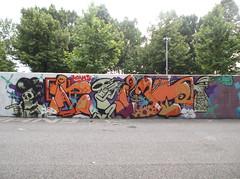 219 (en-ri) Tags: parco muro wall writing torino skull graffiti dora pare teschio arancione moans ti 3db alienino