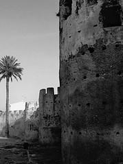 Muralla Árabe de Alzira, Valencia (Spain) (PhotoMont) Tags: bw history blancoynegro monochrome flickr flickrcentral amateurs flickraddicts bwdreams bwsepia bwdigital firstphotographers flickrenespañol fvac valenciatourism hispanicphotographers