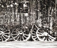 Remember Snow Tires? (jackalope22) Tags: snow wagon wheels barn flakes bw rustic trip wyoming