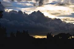 January storms (Images by Jeff - from the sea) Tags: nikon d7200 dusk trees twilight sky tamronsp2470mmf28divcusd sunset clouds storm 2017 500v20f topf25