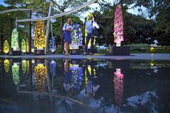 Marina Bay Countdown Singapore (MBCS) 2017 (gintks) Tags: gintaygintks gintks marinabaysands bayfronteventspace singapore singaporetourismboard singapur sg51 yoursingapore exploresingapore reflection wishingcharms wishingtrees dbs