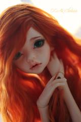 IMG_2508 (Cleo6666) Tags: dim larina doll bjd msd