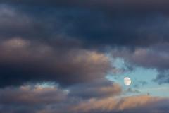 Moonrise (thunderbird-72) Tags: nachmittag moonrise lune mond mondaufgang moon wolken clouds launstroff alsacechampagneardennelorrain frankreich alsacechampagneardennelorraine fr