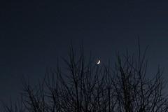 Mars, crescent Earthshine Moon & Venus Aligned (MickStonedAgain) Tags: crescent alignment venus earthshine moon mars