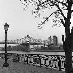 59 St. Bridge (Dalliance with Light (Andy Farmer)) Tags: 59stbridge e51stst rolleiflex overcast trix nyc cityscape eastriver ddxdeveloper19 manhattan queensborobridge film newyork unitedstates us
