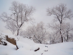 Snowy fairytale (bulgit) Tags: snow fairytale trees covered harmony deep cold rocks up january plovdiv bulgaria