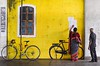 Searching result! (ashik mahmud 1847) Tags: bangladesh colorful yellow background d5100 nikkor people man woman bycycle art design painting